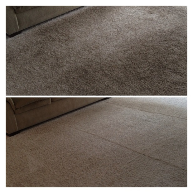 Citrusolution Carpet Cleaning Citysearch