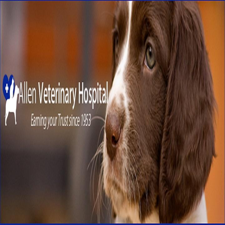 Allen Veterinary Hospital image 10