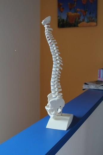 Fysiotherapie Hoogendoorn