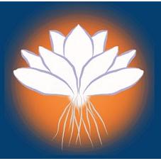 Higher Purpose Healing Massage, Meditation, Life Coaching Therapy