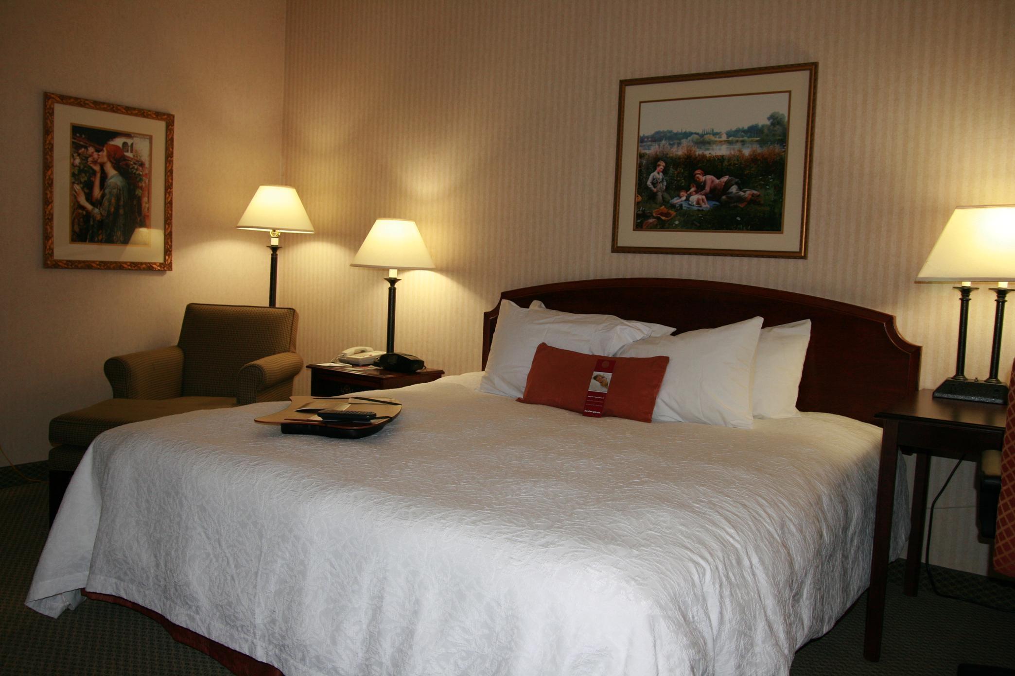 Hampton Inn Salt Lake City/Murray image 27