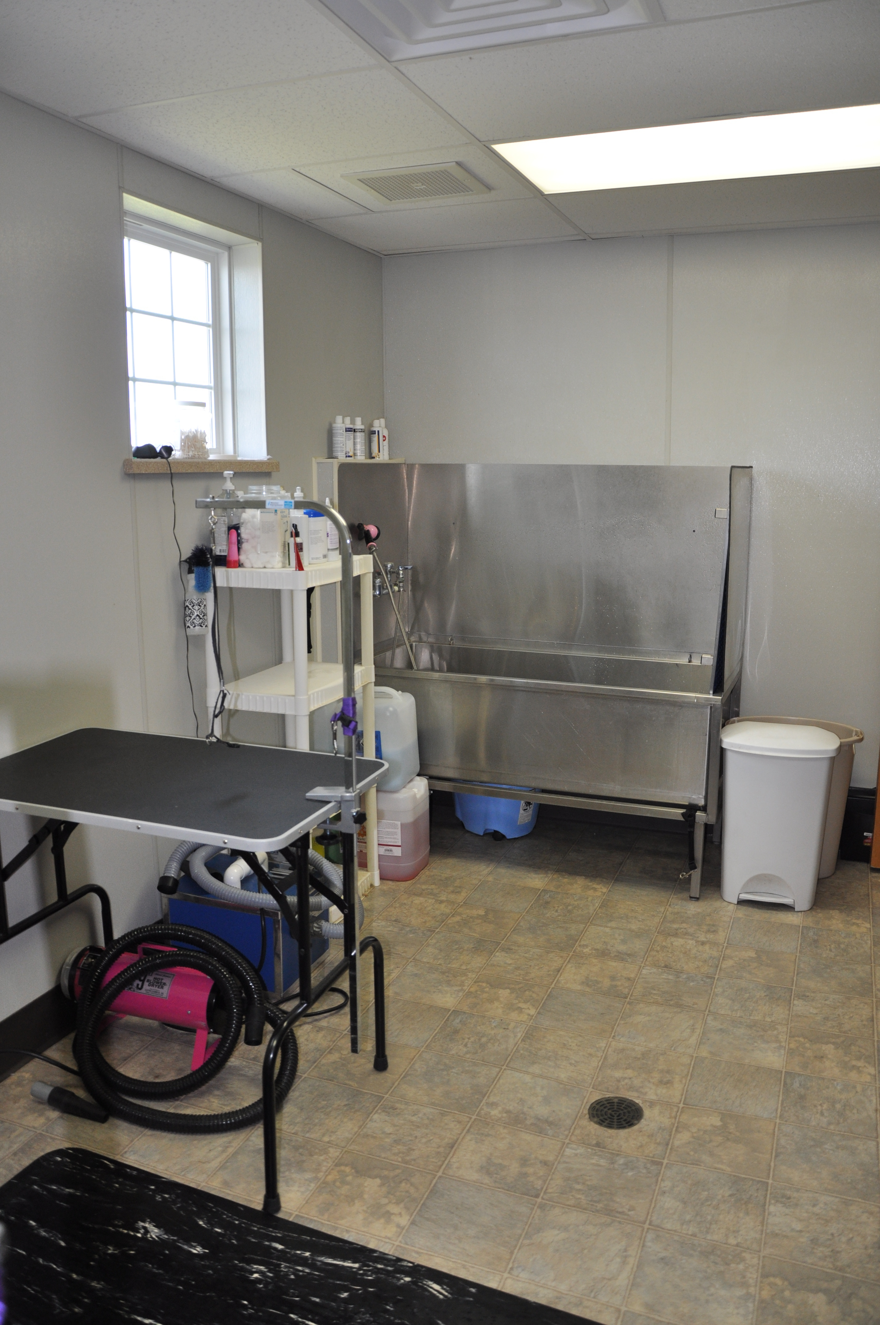 Bluffton Veterinary Hospital & Pet Care Center image 4
