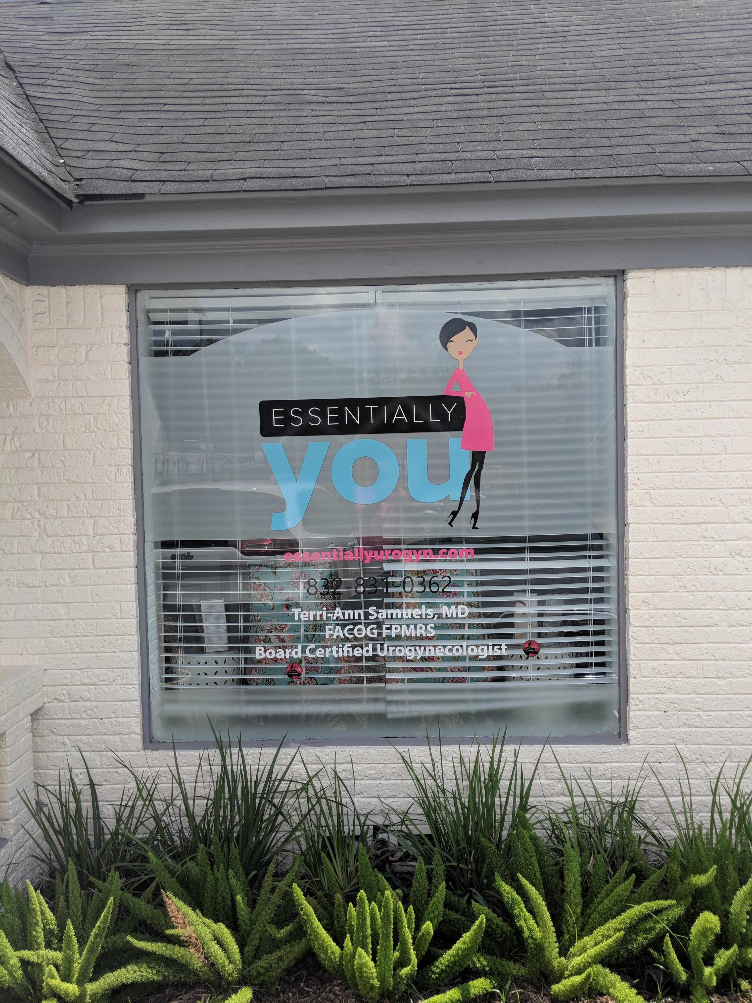 Essentially You by Terri - Ann Samuels MD image 1