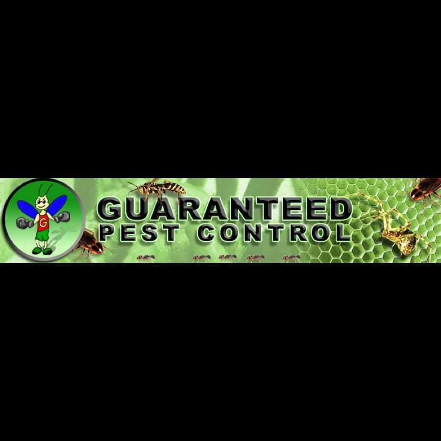 Guaranteed Pest Control Service Co image 3