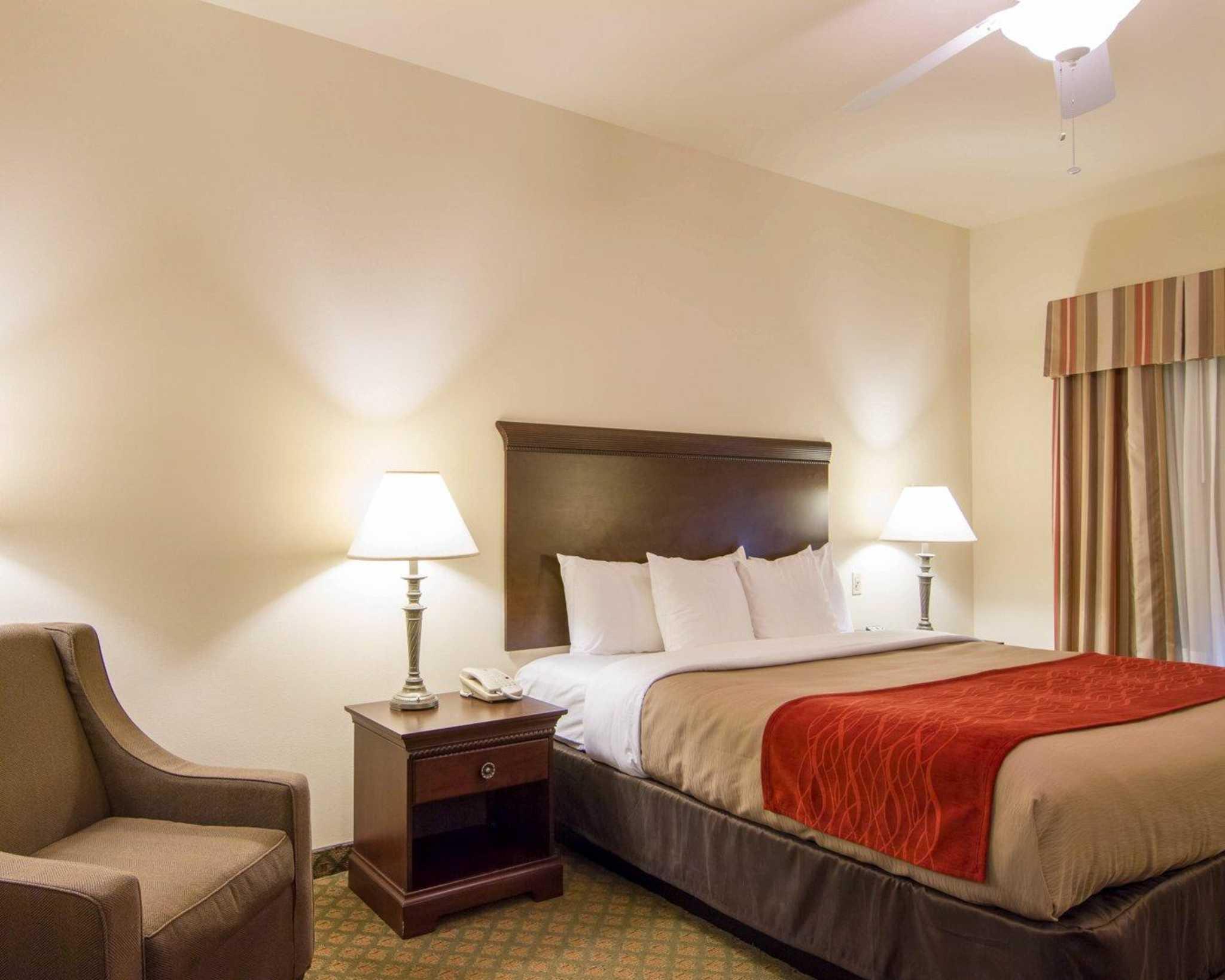 Comfort Inn & Suites Airport image 4