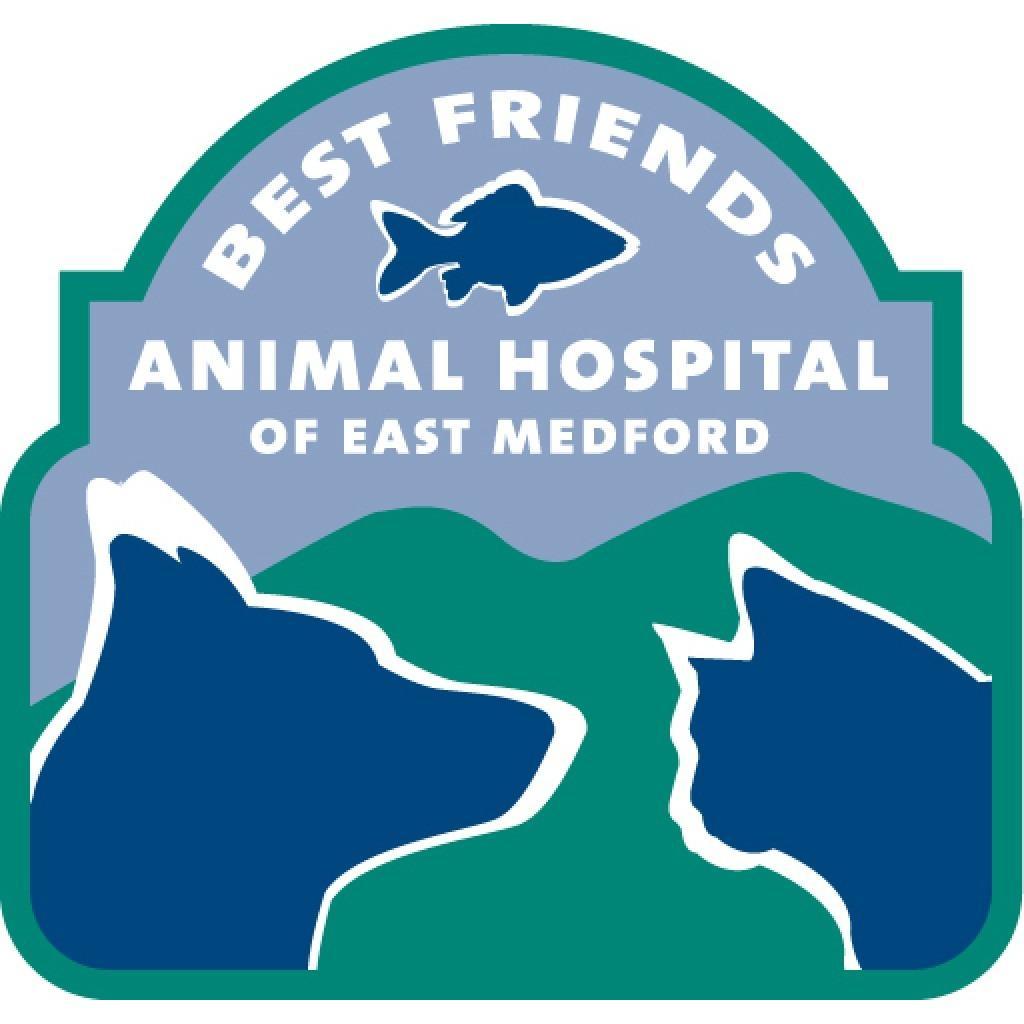 Best Friends Animal Hospital Of East Medford