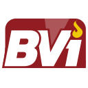 BuenaVista Information Systems LLC