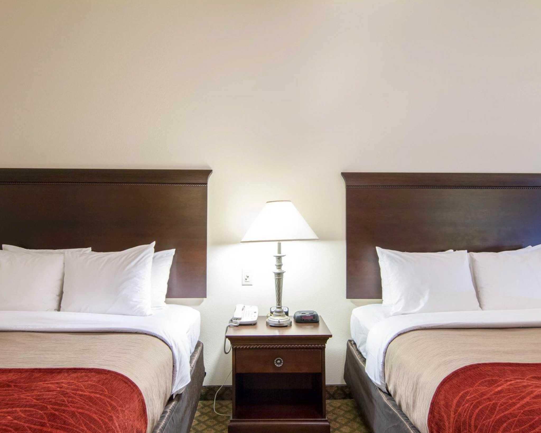 Comfort Inn & Suites Airport image 8