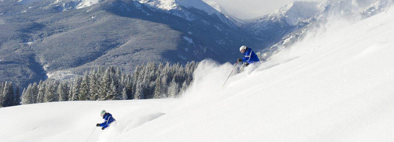 American Ski Exchange image 0