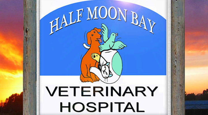 VCA Half Moon Bay Animal Hospital image 0