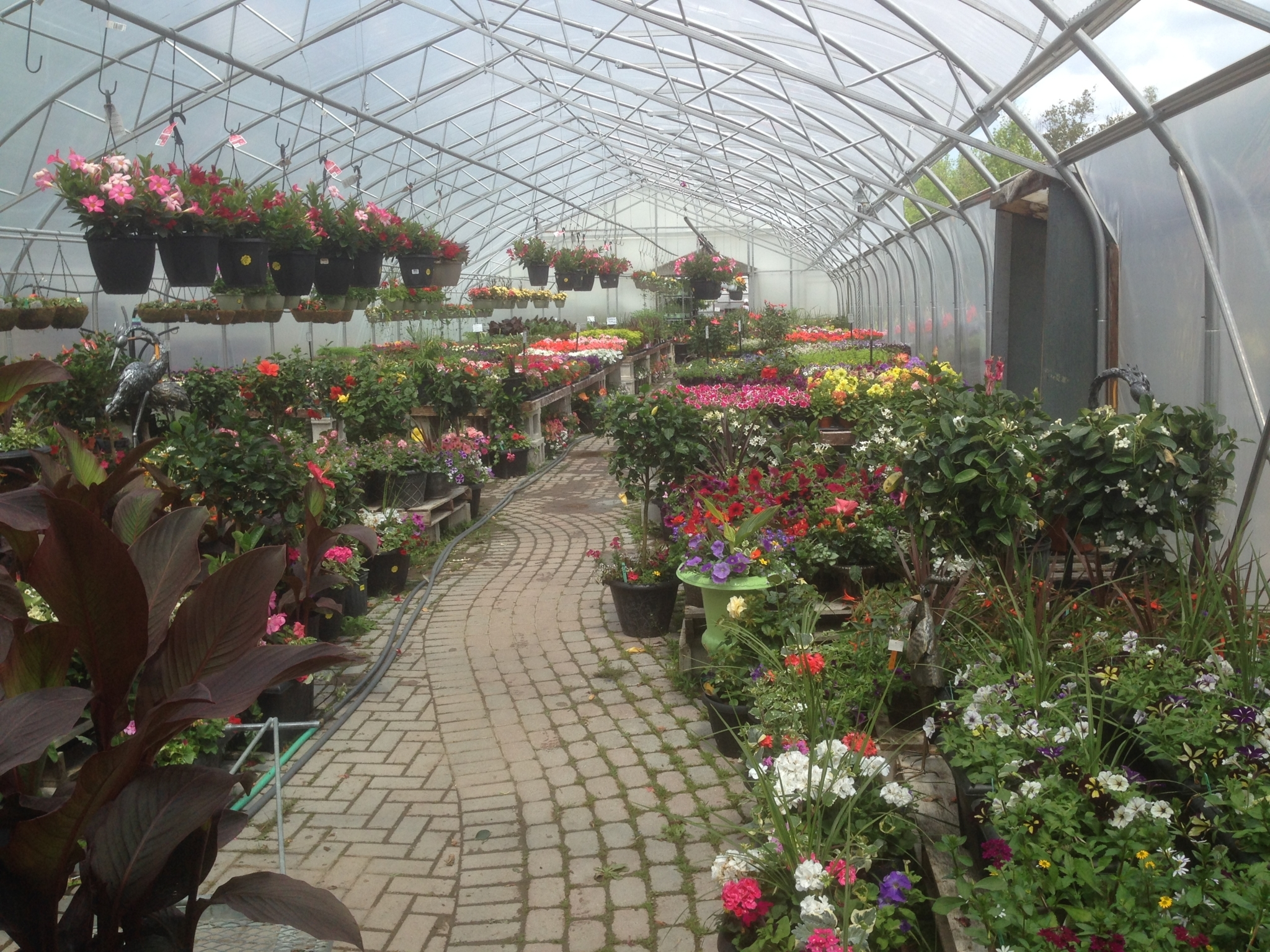 Holland Valley Nursery in Holland Landing: Garden Nursery