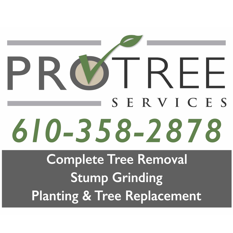 Tri County Tree Experts