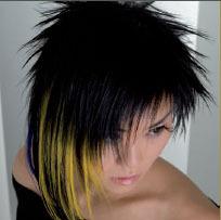 Kapsalon Fox Hair Fashion