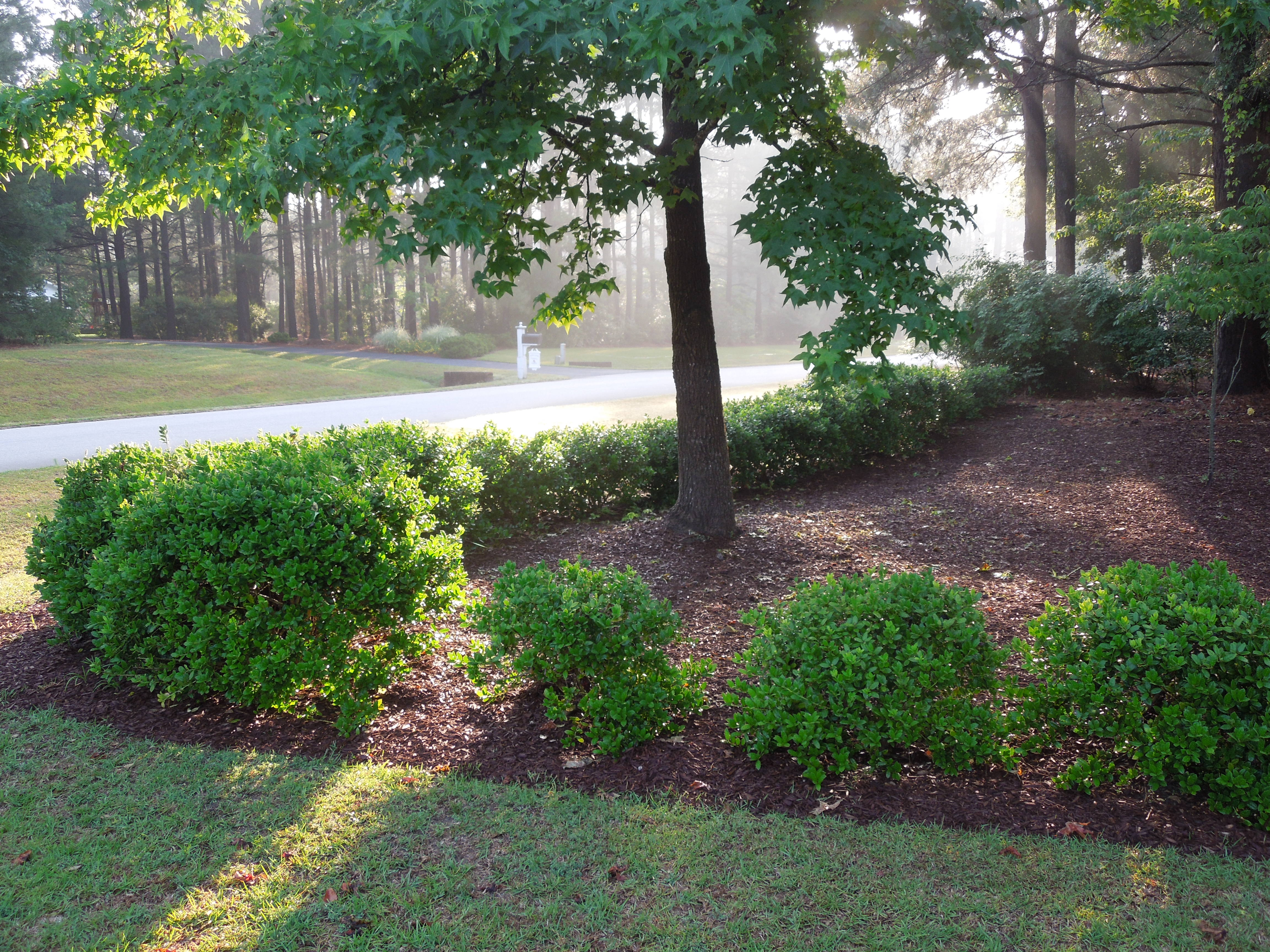 Triangle Landscape Supplies Raleigh In Raleigh Nc