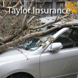 Taylor Insurance - Kaufman, TX - Insurance Agents