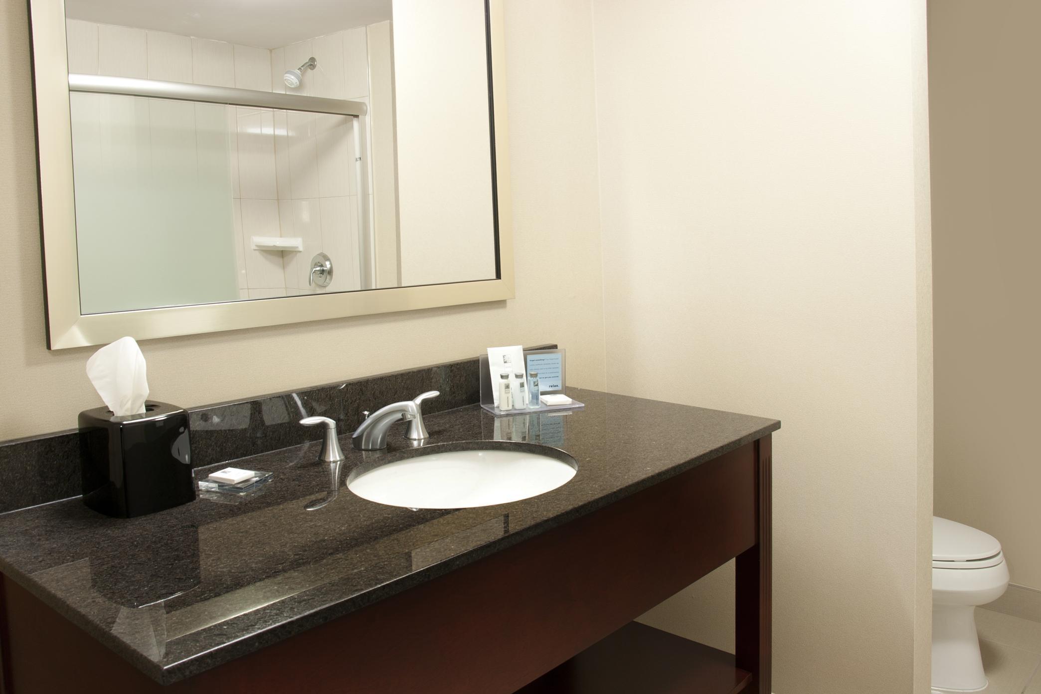 Hampton Inn by Hilton Brampton Toronto in Brampton: Standard Bathroom