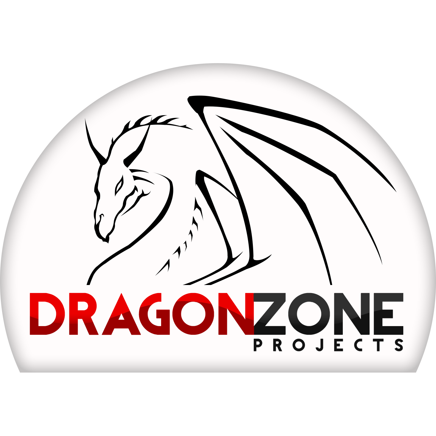 Dragon Zone Projects image 0