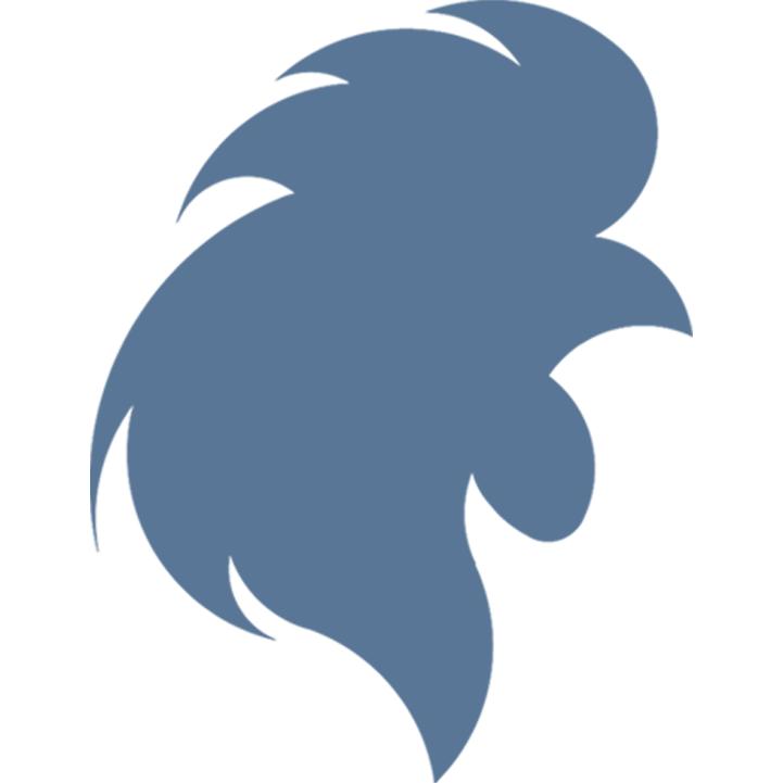 Blue Hen Insurance
