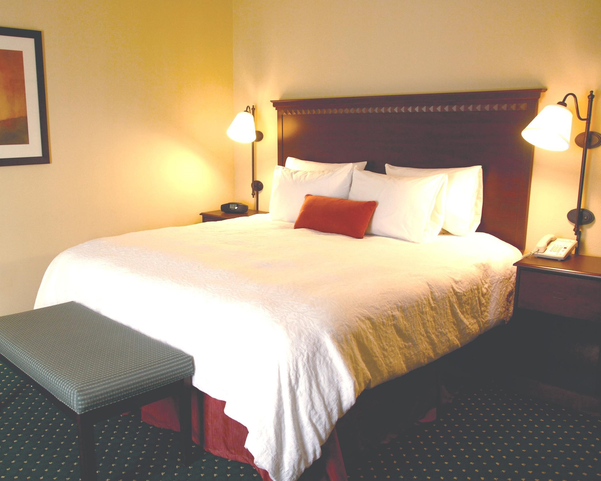 Hampton Inn & Suites Saginaw image 11