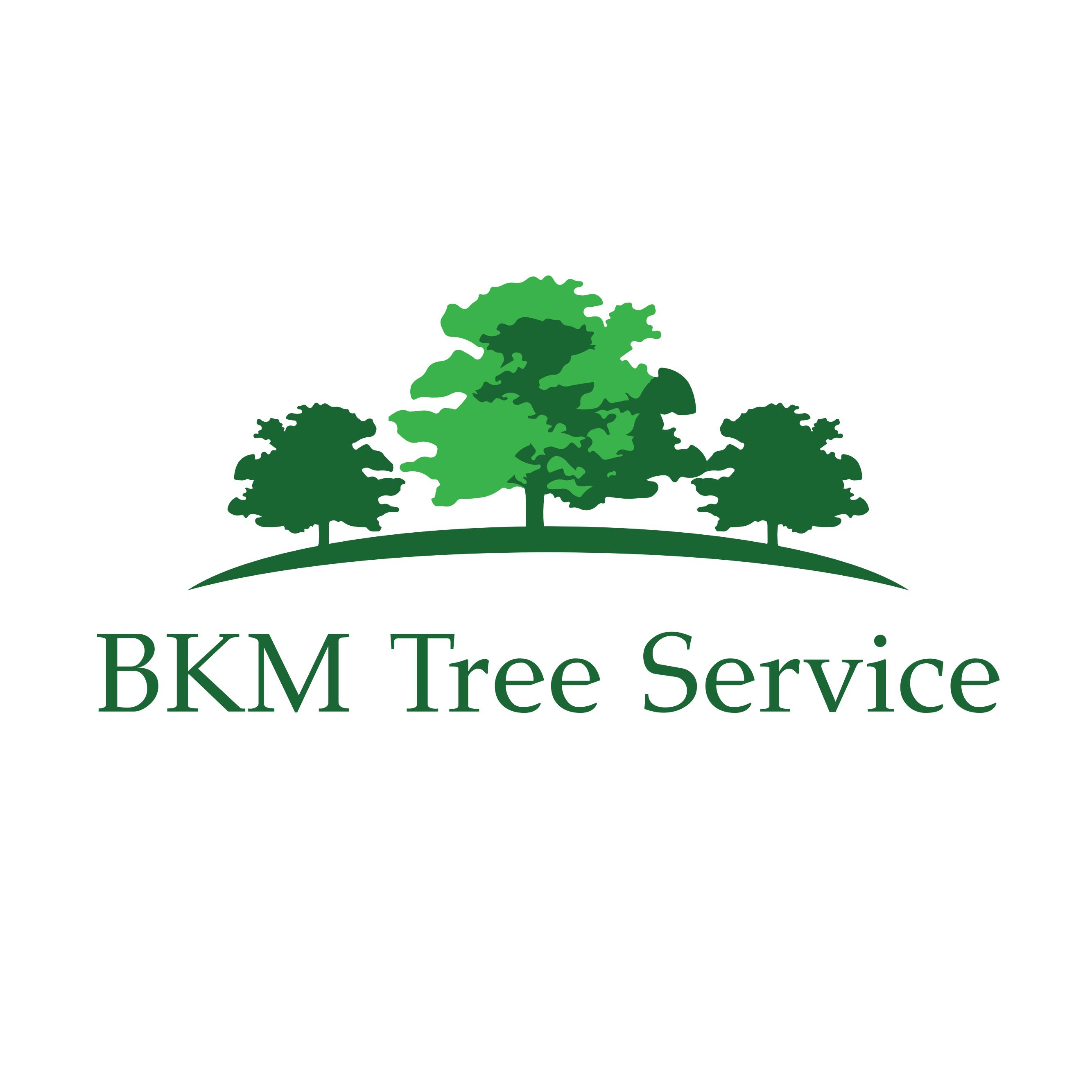 BKM Tree Service