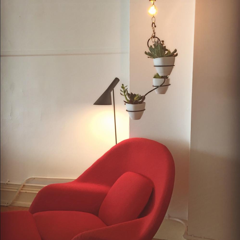 Modern Classics Furniture   Bellingham