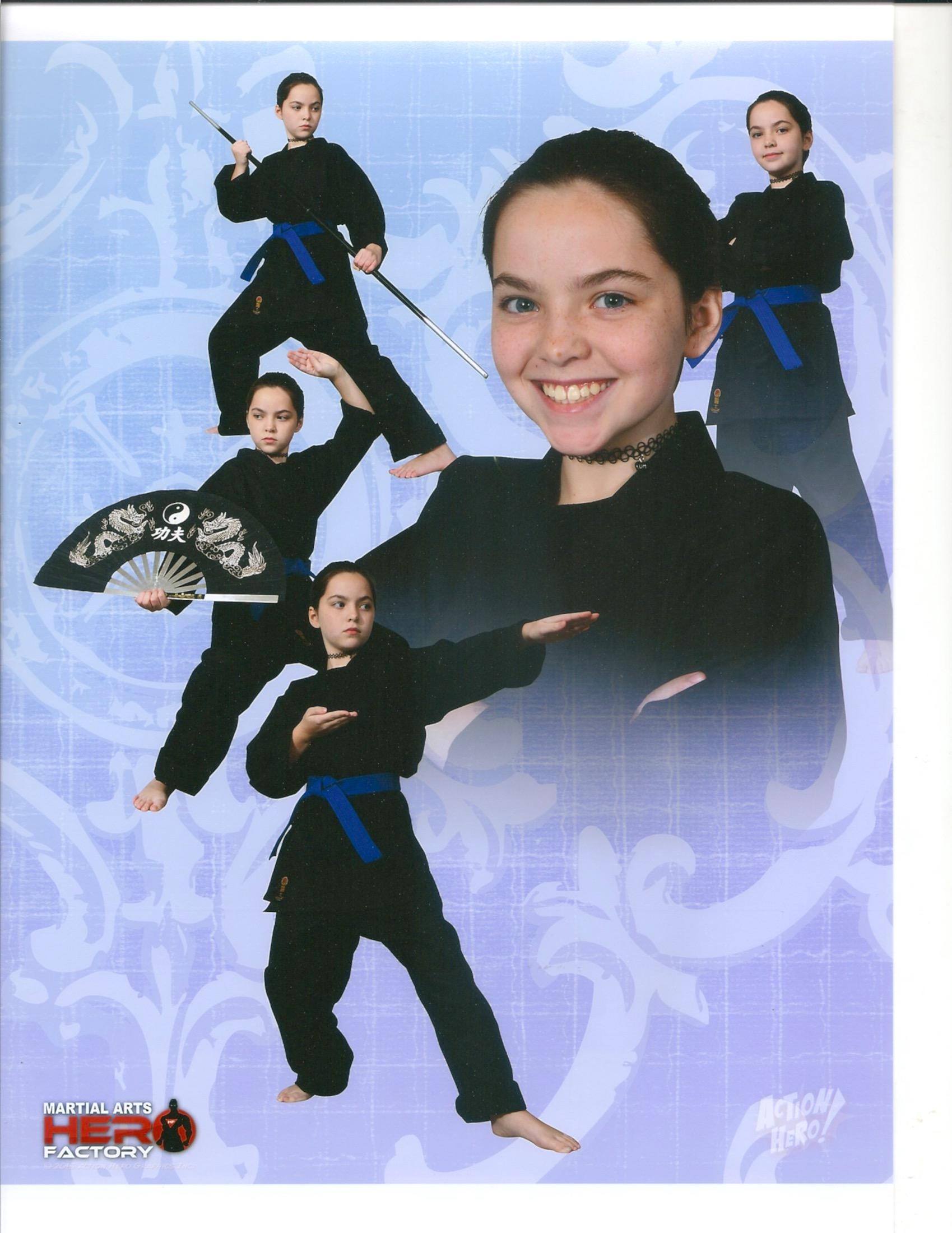 Martial Arts Hero Factory image 3