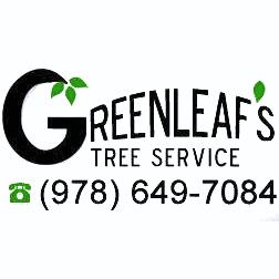Greenleaf's Tree Service image 45