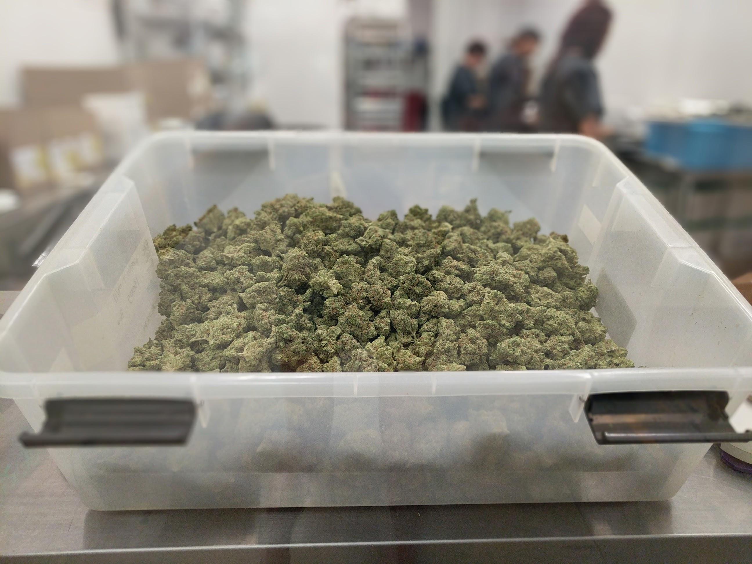 Green Street Medicinals | Medical Marijuana Delivery San Diego, CA image 2