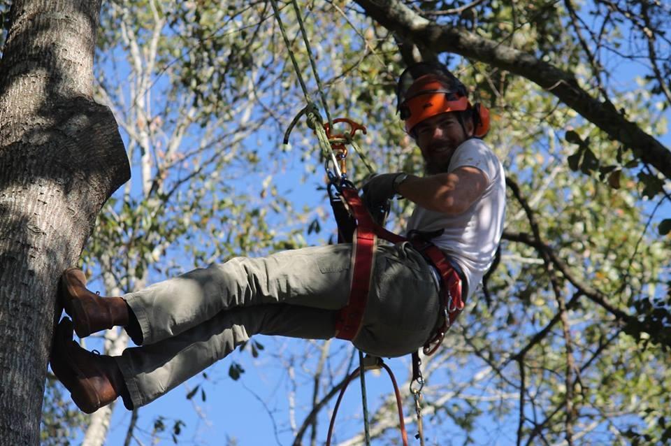 Tim Kilpatrick Tree Service image 0