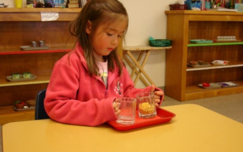Montessori School Of Sonoma image 2