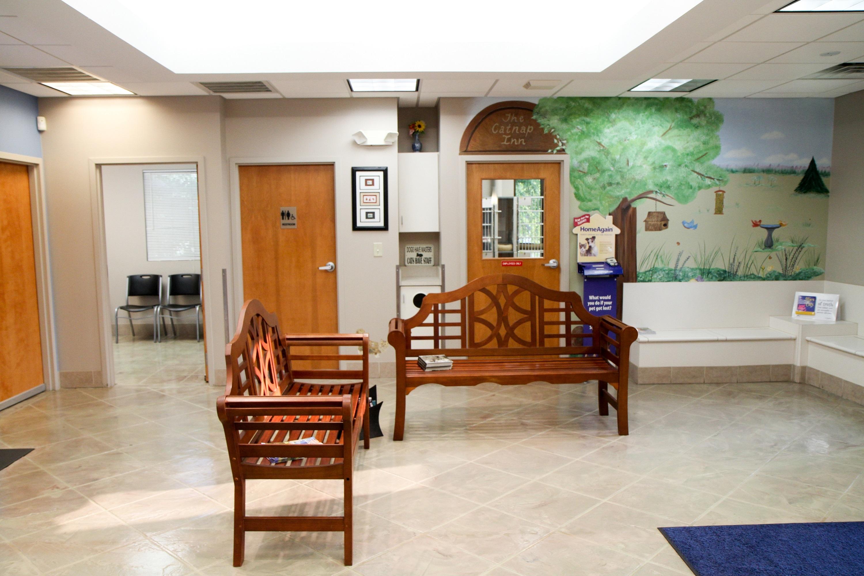 VCA Sugar Grove Animal Hospital image 3