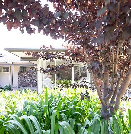 Acacia Mental Health - Sunnyvale image 1