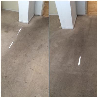 Pristine Carpet Cleaning image 25