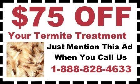 D & T Pest and Termite Control, Inc. image 15