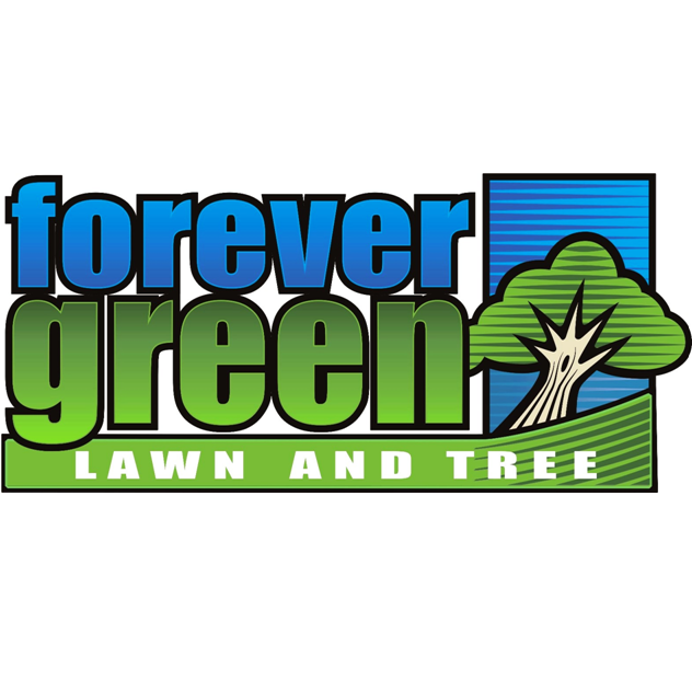 Forever Green Lawn & Tree