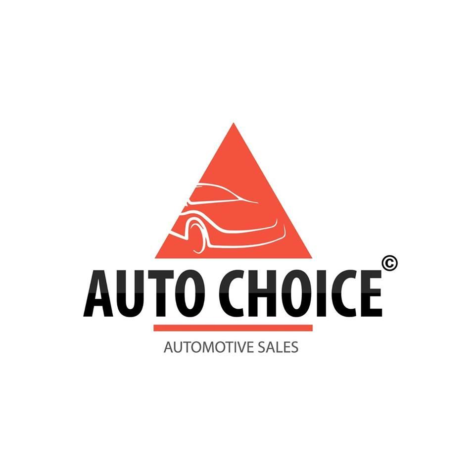 AUTO CHOICE INC