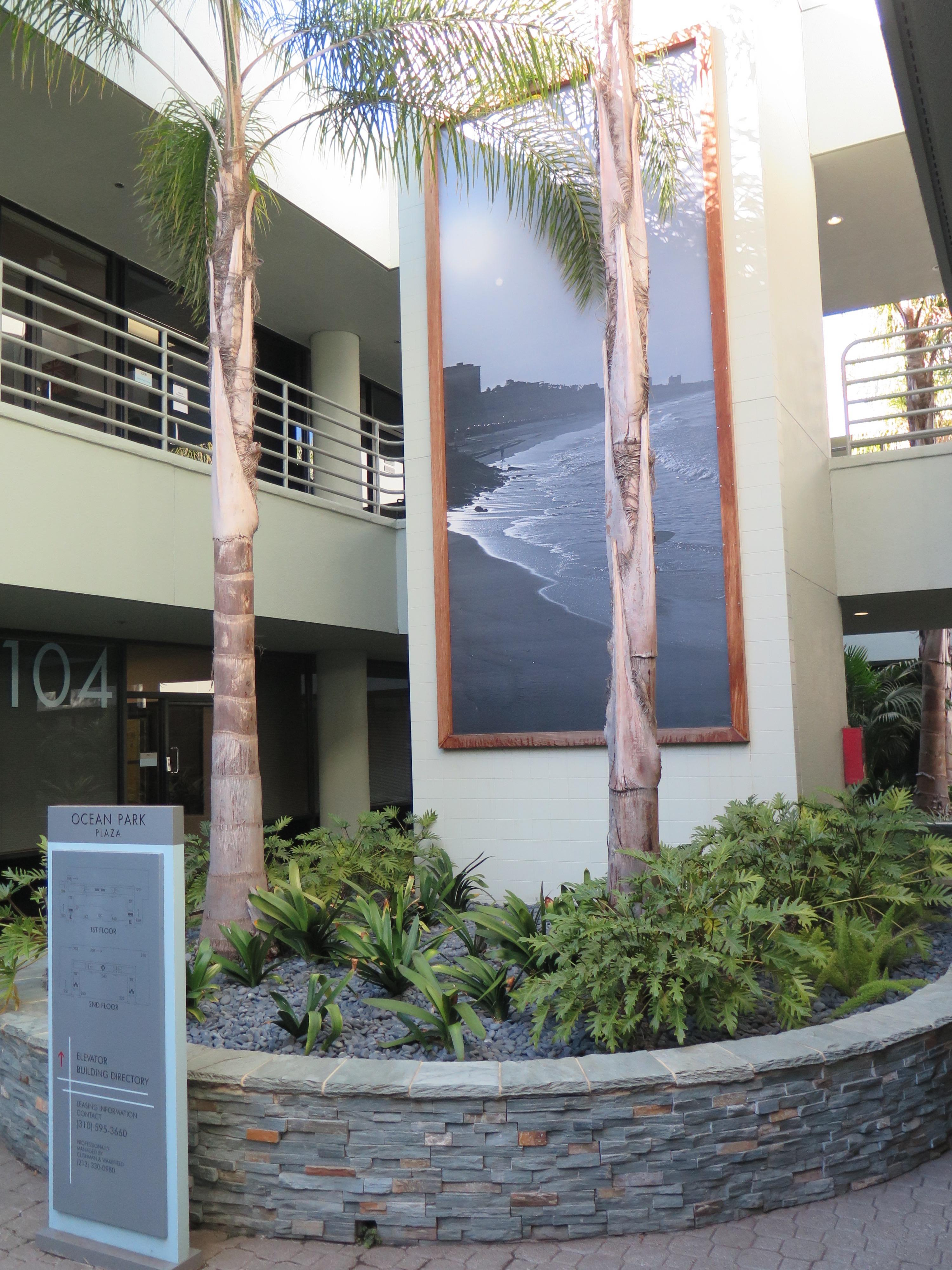 DynamX Physical Therapy Santa Monica image 4