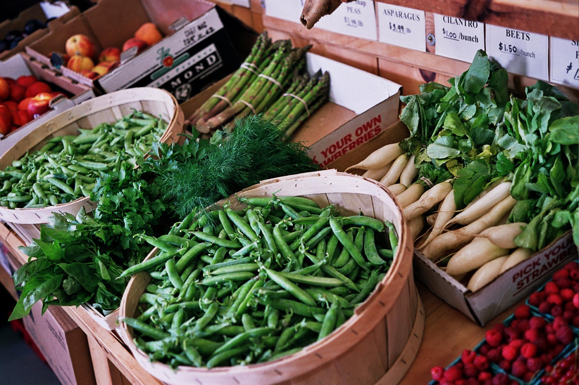 Nourse Farms image 3