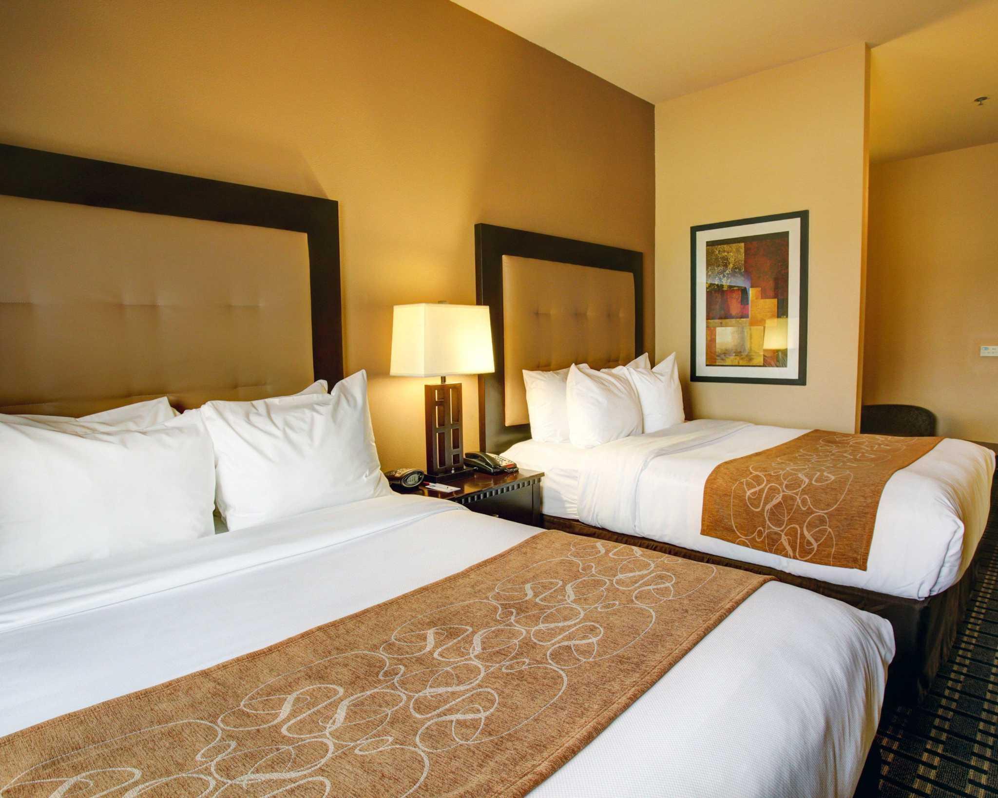 Comfort Suites Buda - Austin South image 7