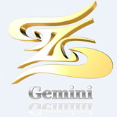 Gemini Salsa image 1