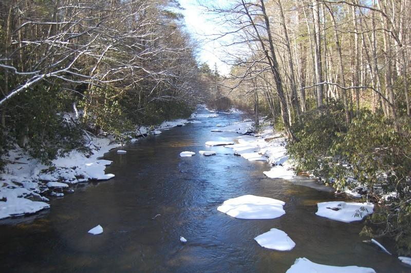 Bring your fly fishing rod and join us on the beautiful Linville River.