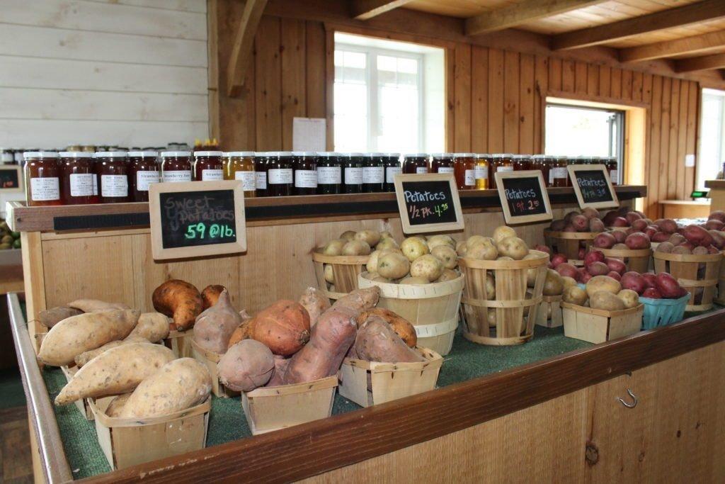 Kissel Hill Fruit Farm image 5