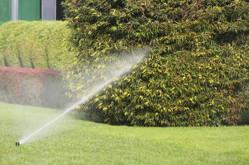 First Response Restoration, Water Damage Minneapolis Specialist image 2