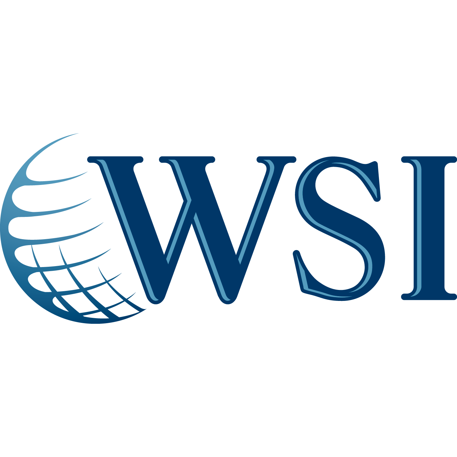 WSI Digital Solutions Group