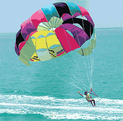 Key West DO IT ALL All Day Watersports Adventure image 4