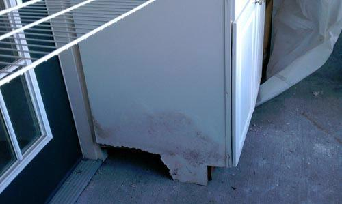 Expert Mold Removal Inc. image 3