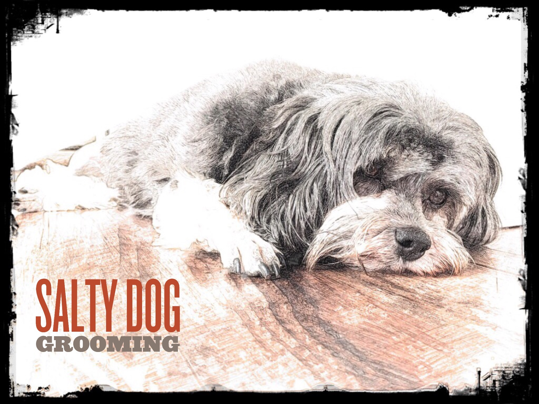 Salty Dog Grooming Pocomoke Md