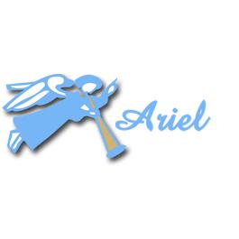 Ariel Janitorial Service Inc.