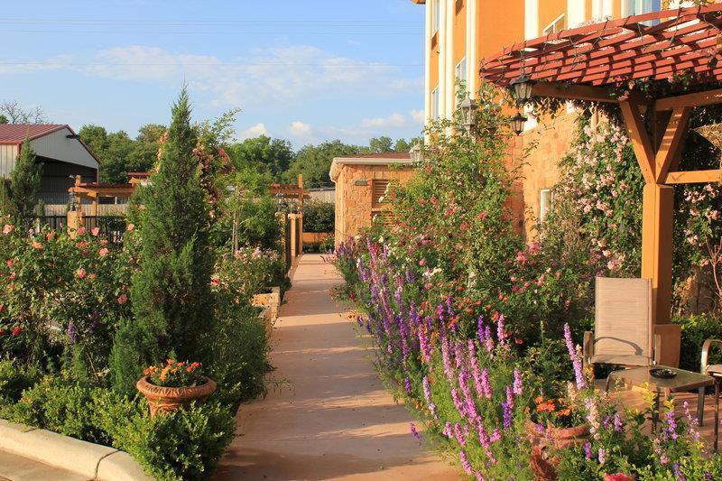 Best Western Plus Blanco Luxury Inn & Suites image 30