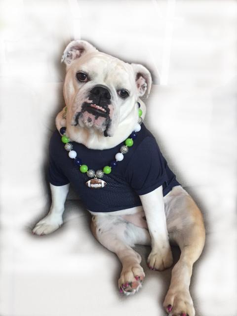 Pawz-abilities Pet Sitting & Home Security - Bellingham, WA 98284 - (360)770-6176   ShowMeLocal.com